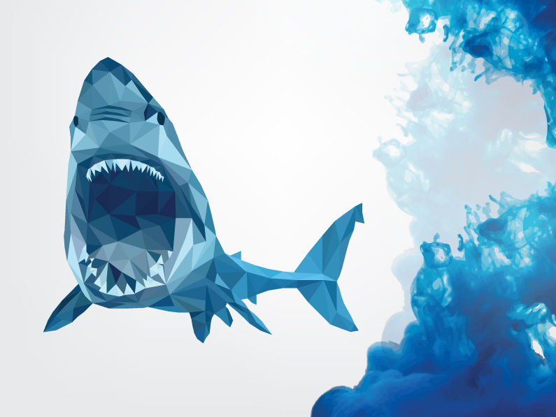 Shark Illustration - Congruent Graphics